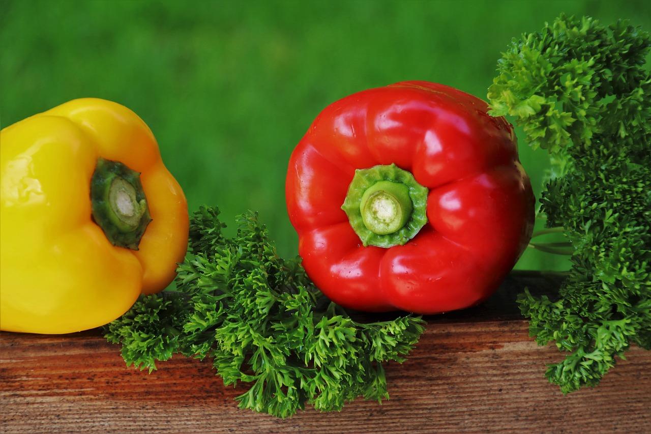 Hubnutí s proteinovou dietou