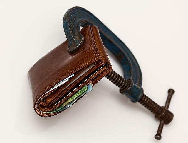 ekonomický tlak
