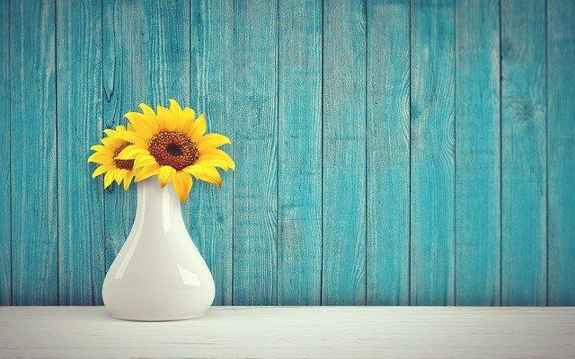 Jak se správně starat o sušené květiny