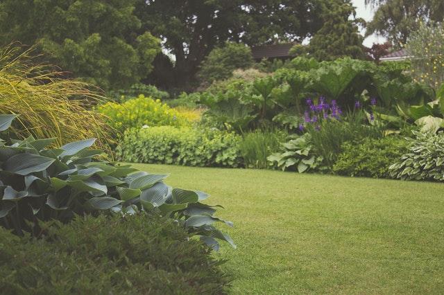 Jak pečovat o zahradu v letních měsících
